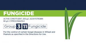 Smart Pantheon Fungicide