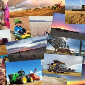 Crop Smart Harvest photo competition