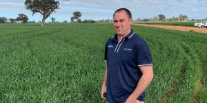 Tim Pilkington standing in crop