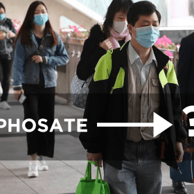 glyphosate and coronavirus